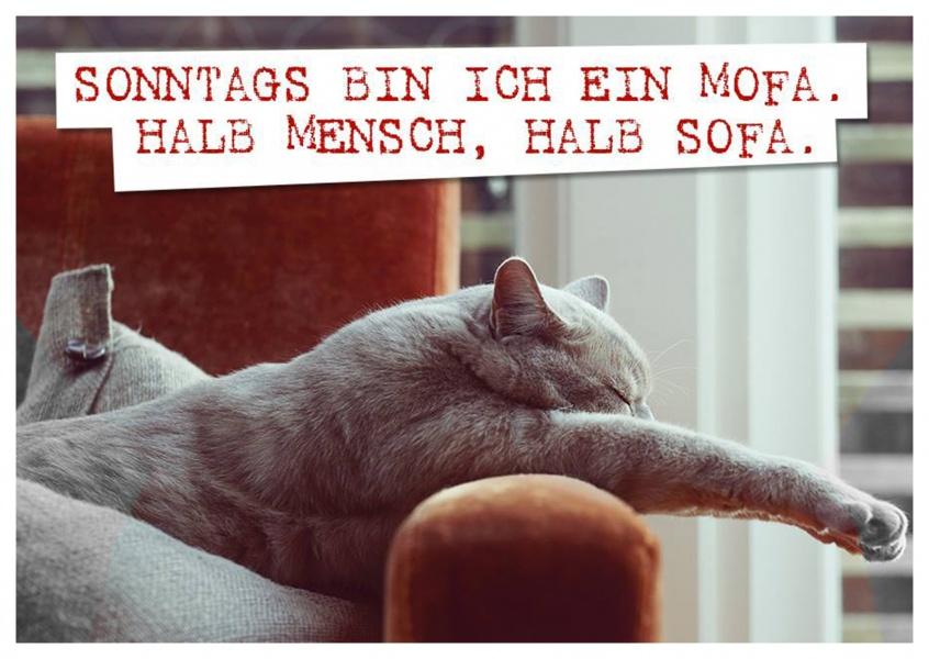 Sonntags bin ich ein mofa humor echte postkarten for Couch lustig