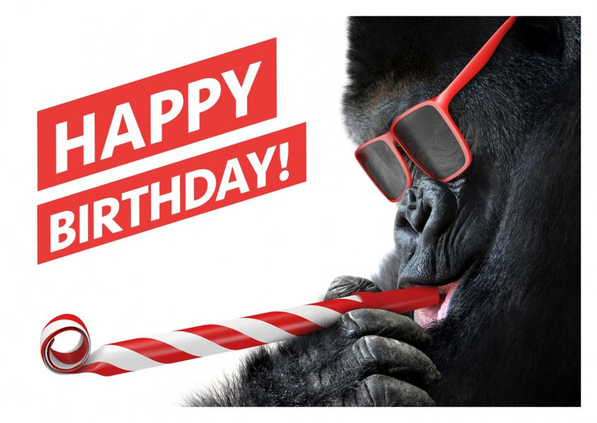Gorilla Happy Birthday Cards Send Real Postcards Online