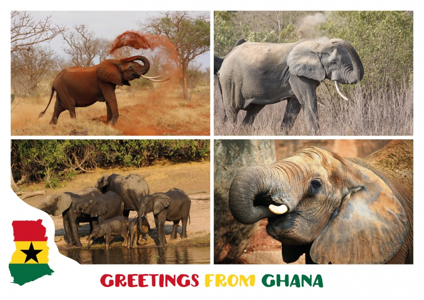 Greetings from ghana vacation greetings send real postcards online m4hsunfo Gallery