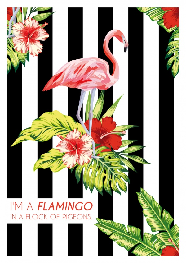 Flamingo in a flock of pigeons-Illustration–mypostcard