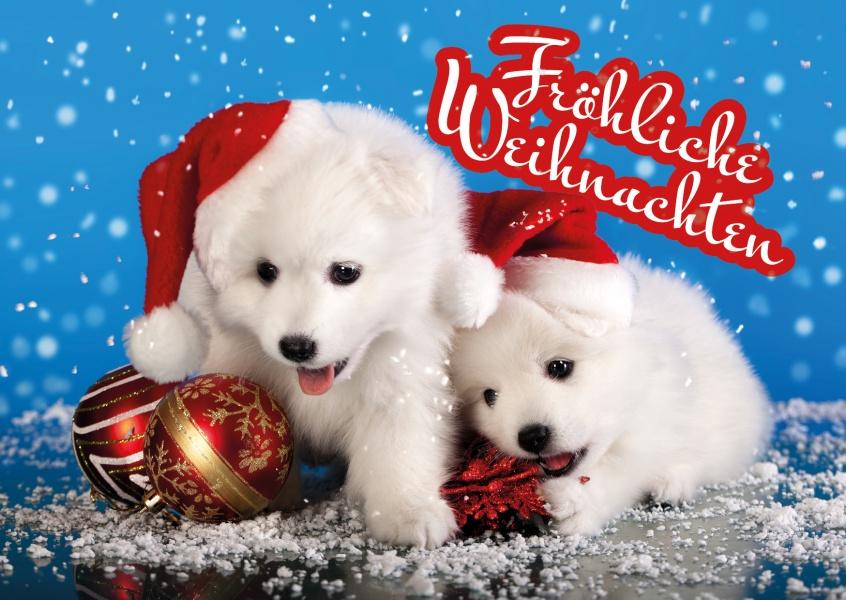 Welpenstarke fr hliche weihnachten - Niedliche weihnachtskarten ...