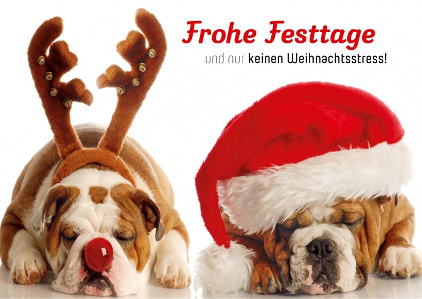 Nur keinen weihnachtsstress weihnachtskarten echte - Weihnachtskarten online versenden ...