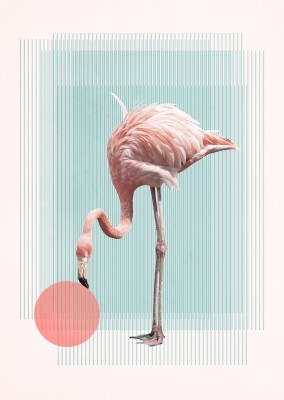 Kubistika Flamingo with ball